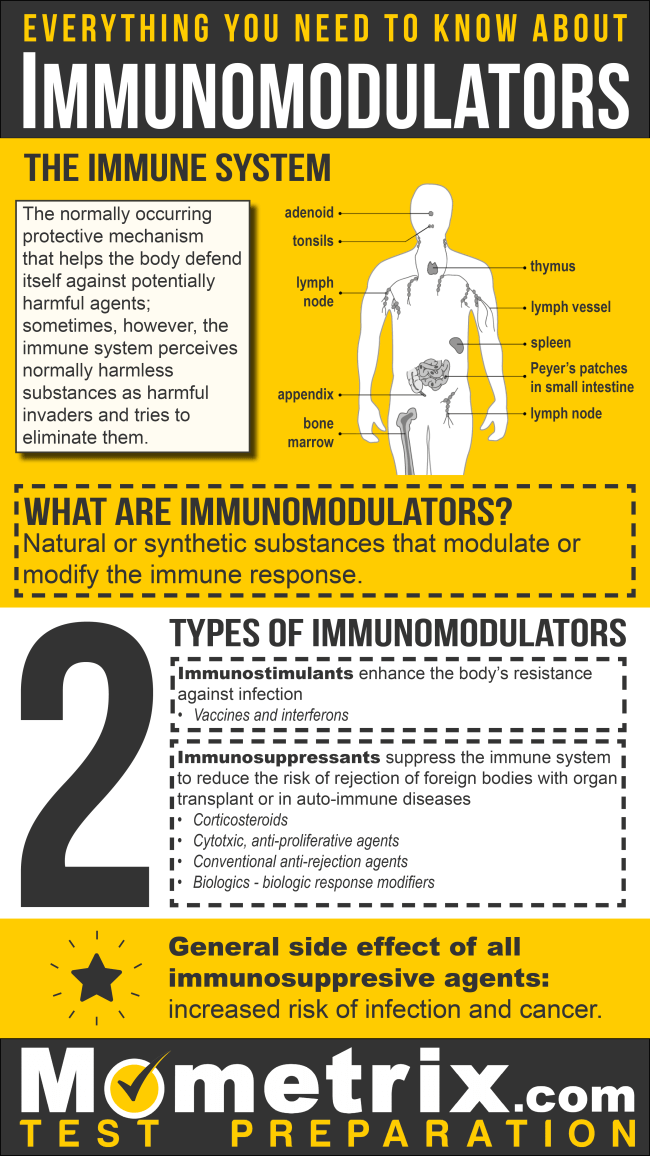 Everything You Need to Know about Immunomodulators and Immunosuppressive Agents