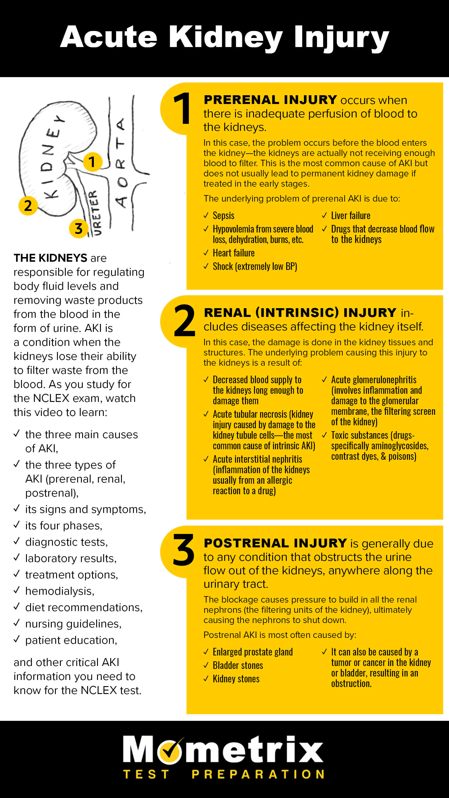 NCLEX Review: Acute Kidney Injury Review