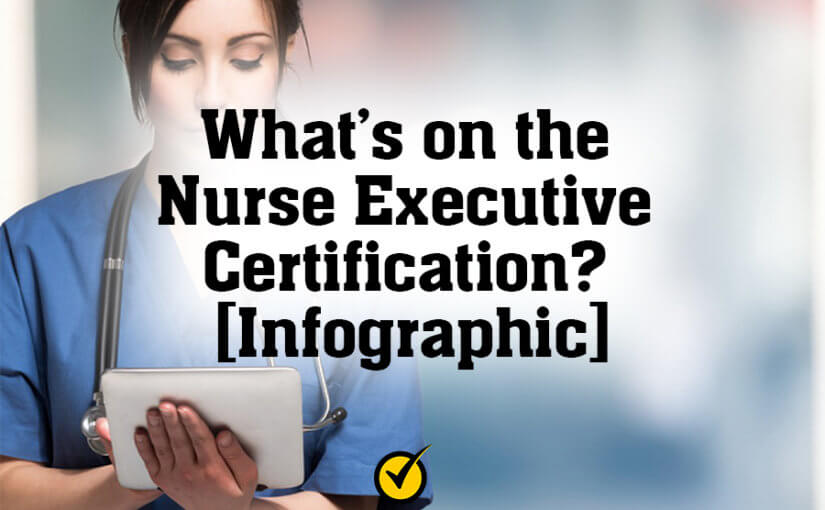 What's on the Nurse Executive Certification? [Infographic]