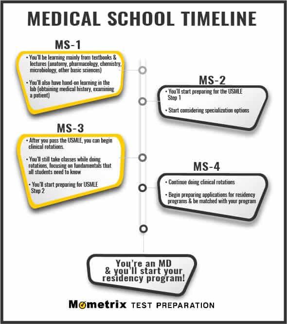 Med School Time Line